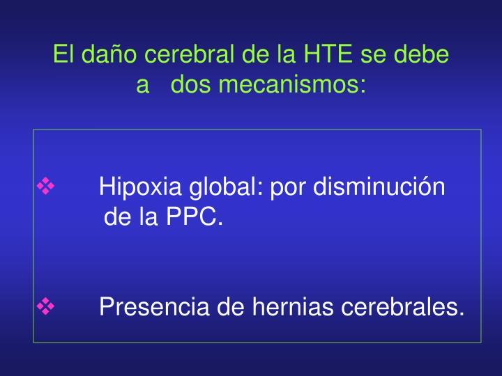 El daño cerebral de la HTE se debe a   dos mecanismos: