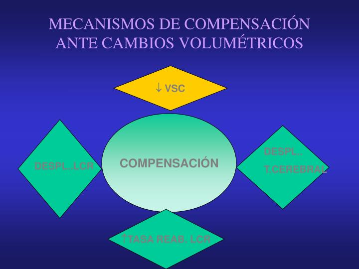 MECANISMOS DE COMPENSACIÓN ANTE CAMBIOS VOLUMÉTRICOS