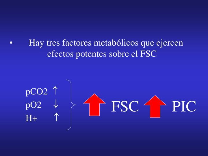 Hay tres factores metabólicos que ejercen