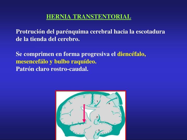 HERNIA TRANSTENTORIAL