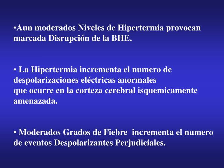 Aun moderados Niveles de Hipertermia provocan marcada Disrupción de la BHE.