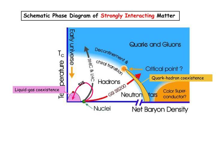 Quark-hadron coexistence