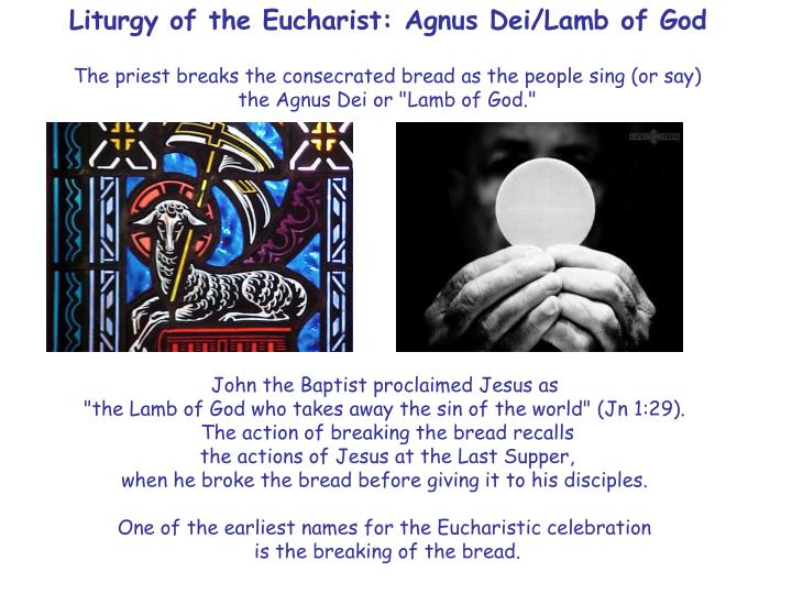 Liturgy of the Eucharist: Agnus Dei/Lamb of God
