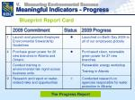 measuring environmental success meaningful indicators progress