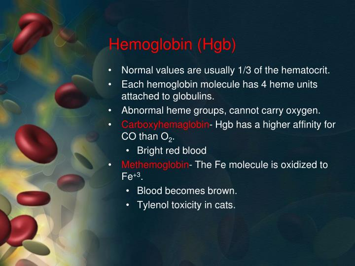 Hemoglobin (Hgb)