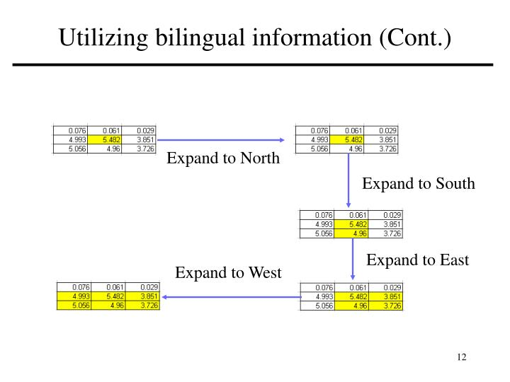 Utilizing bilingual information