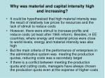 why was material and capital intensity high and increasing