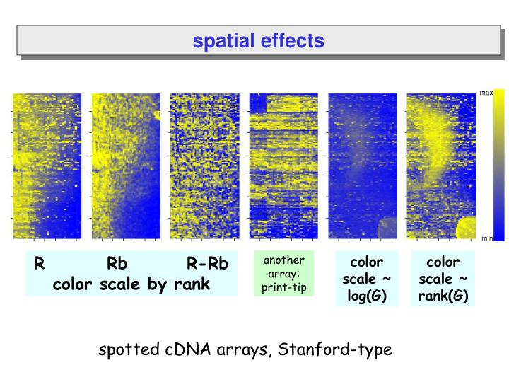spatial effects