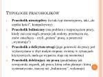 typologie pracoholik w3