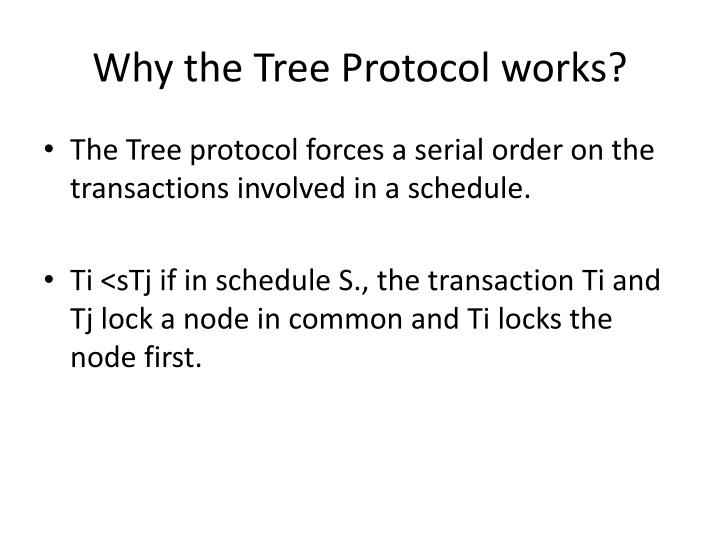 Why the Tree Protocol works?