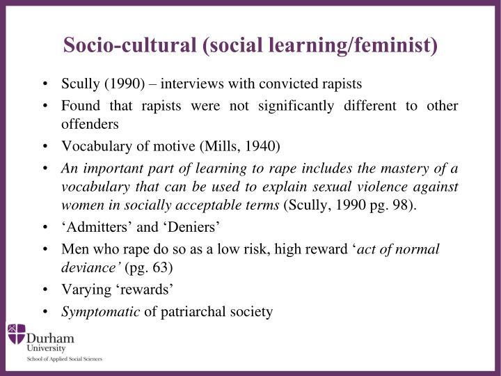 Socio-cultural (social learning/feminist)