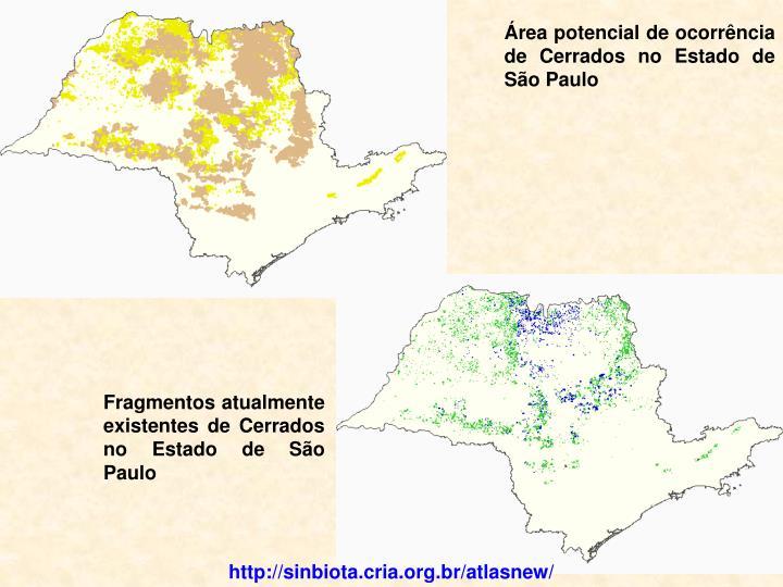Área potencial de ocorrência de Cerrados no Estado de São Paulo
