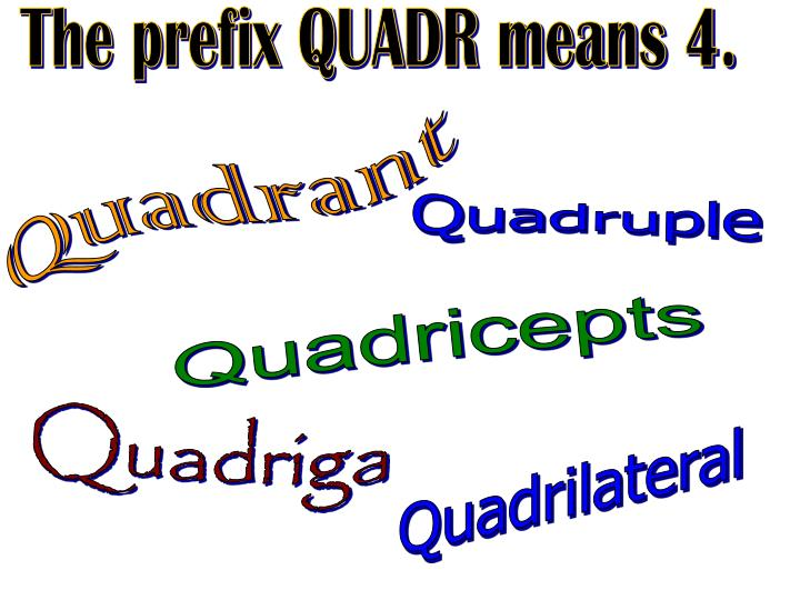The prefix QUADR means 4.