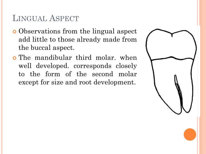 Lingual Aspect