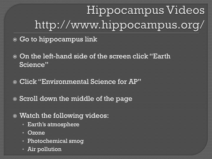 Hippocampus Videos