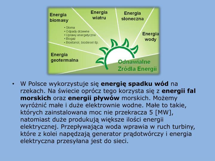 W Polsce wykorzystuje się