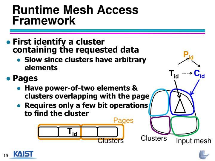 Runtime Mesh Access Framework