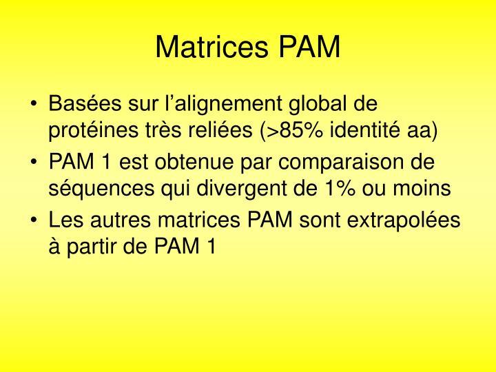 Matrices PAM
