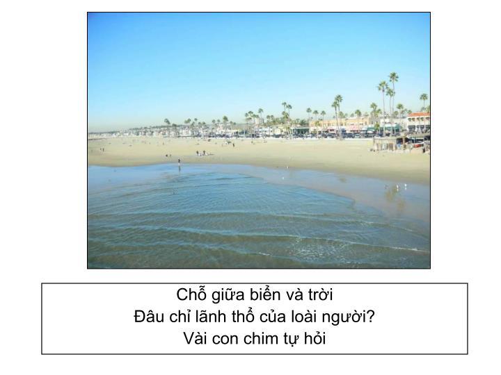 Chỗ giữa biển và trời