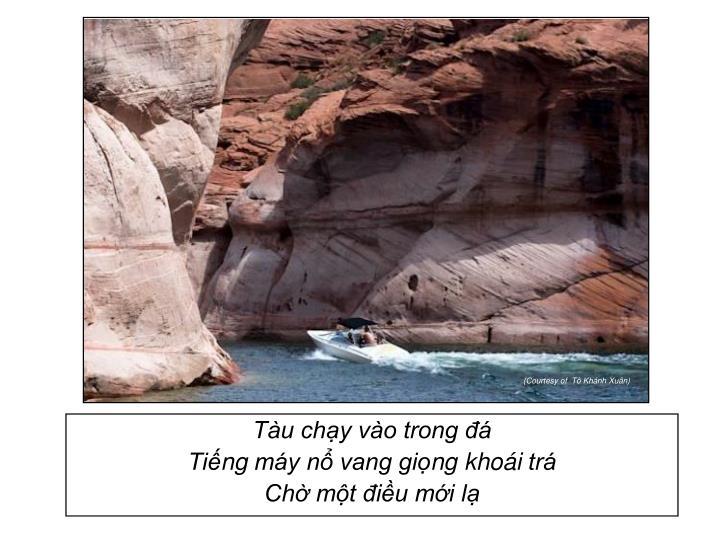 Tàu chạy vào trong đá