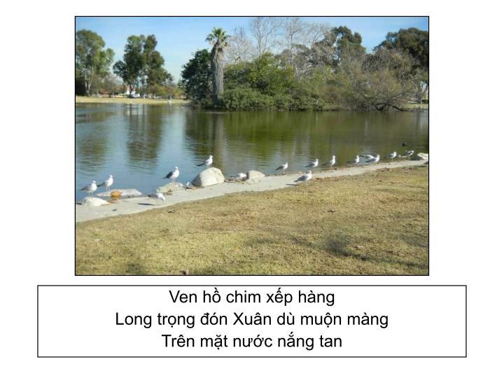 Ven hồ chim xếp hàng