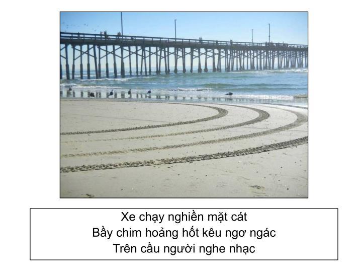 Xe chạy nghiền mặt cát