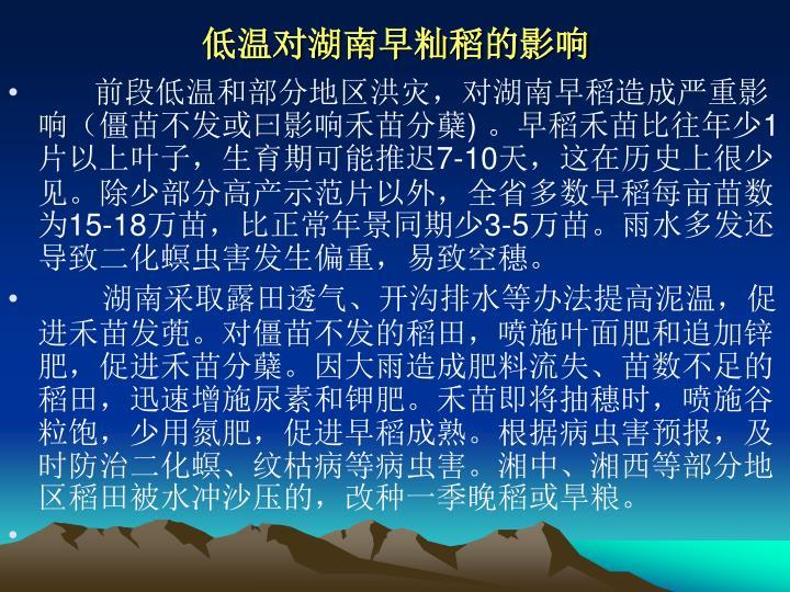 低温对湖南早籼稻的影响
