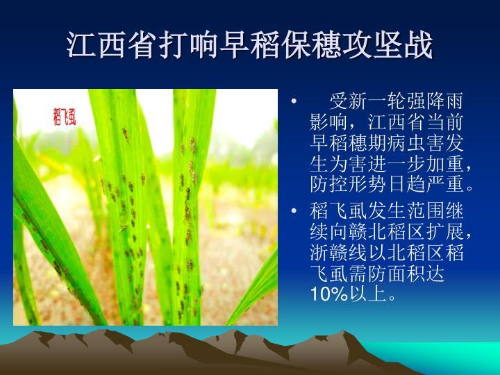 受新一轮强降雨影响,江西省当前早稻穗期病虫害发生为害进一步加重,防控形势日趋严重。