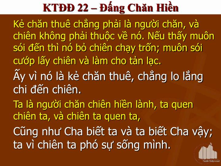 KTĐĐ 22 – Đấng Chăn Hiền