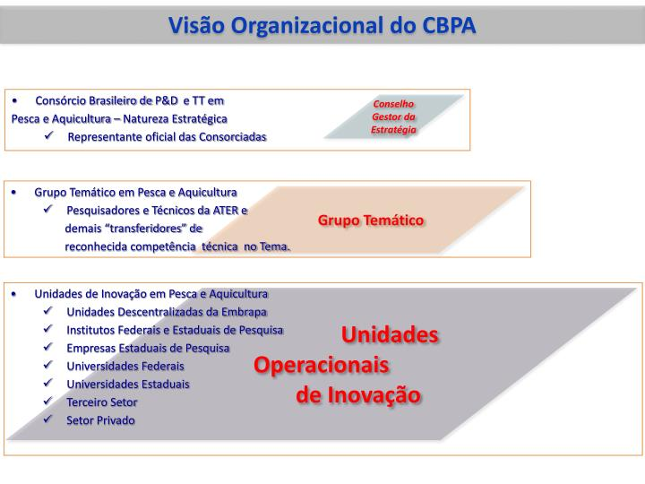 Visão Organizacional do CBPA
