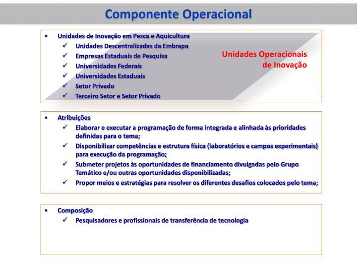 Componente Operacional