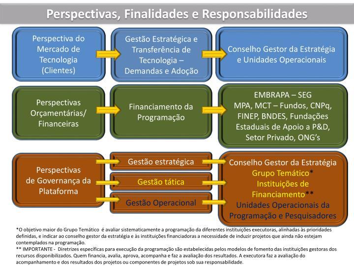 Perspectivas, Finalidades e Responsabilidades