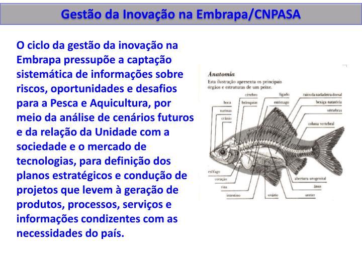Gestão da Inovação na Embrapa/CNPASA