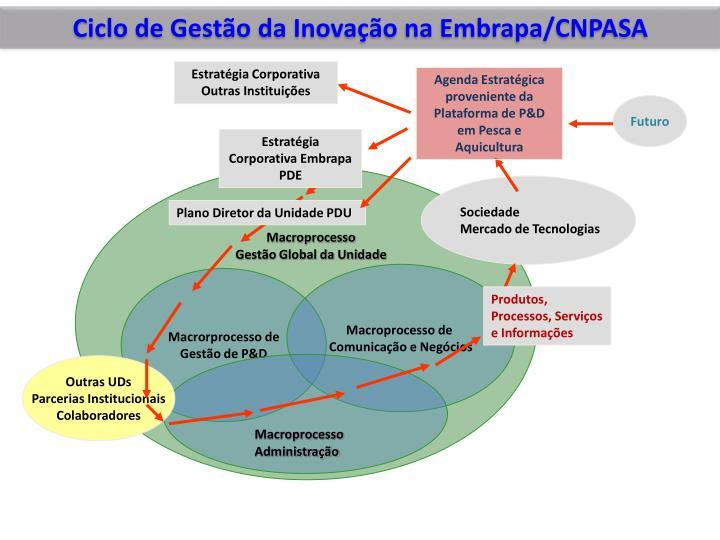 Ciclo de Gestão da Inovação na Embrapa/CNPASA