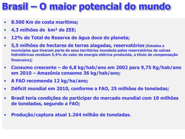 Brasil – O maior potencial do mundo