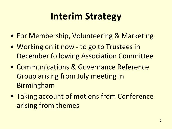 Interim Strategy