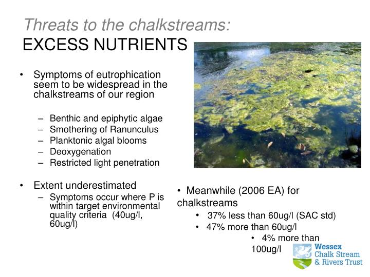 Threats to the chalkstreams: