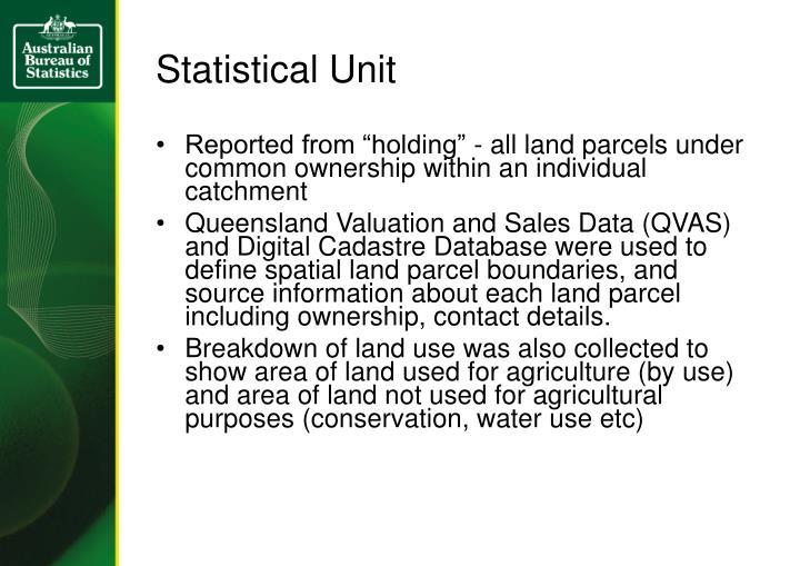Statistical Unit