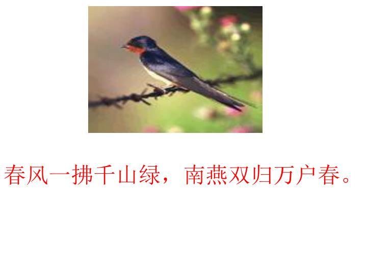 春风一拂千山绿,南燕双归万户春。