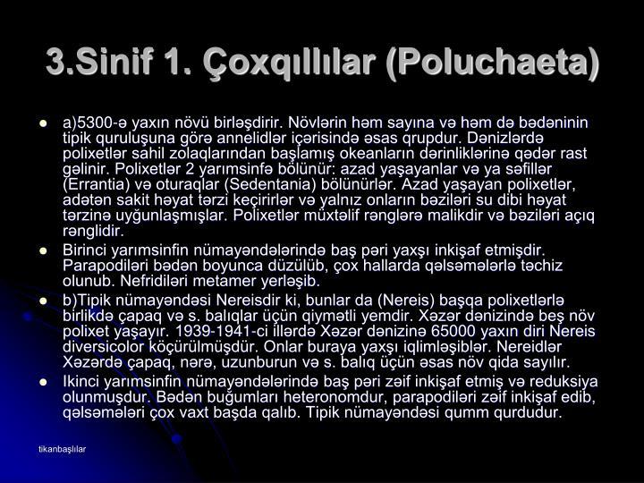 3.Sinif 1. Çoxqıllılar (Poluchaeta)