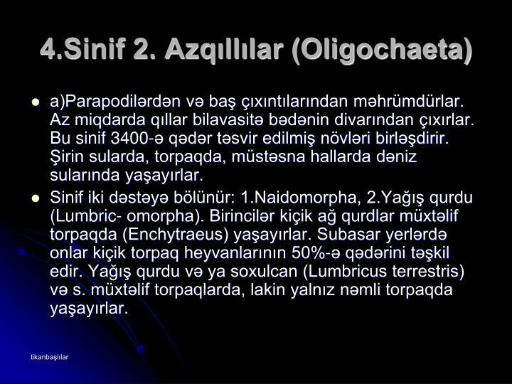 4.Sinif 2. Azqıllılar (Oligochaeta)