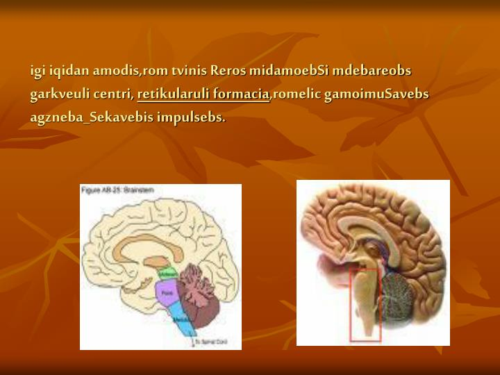 igi iqidan amodis,rom tvinis Reros midamoebSi mdebareobs garkveuli centri,