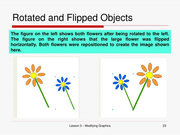 Rotated and Flipped Objects
