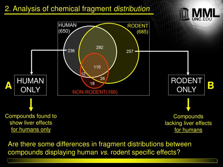 2. Analysis of chemical fragment