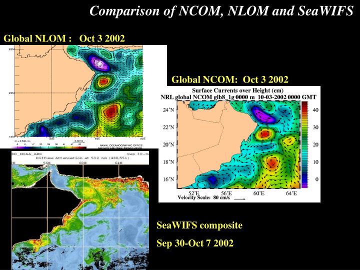 Comparison of NCOM, NLOM and SeaWIFS