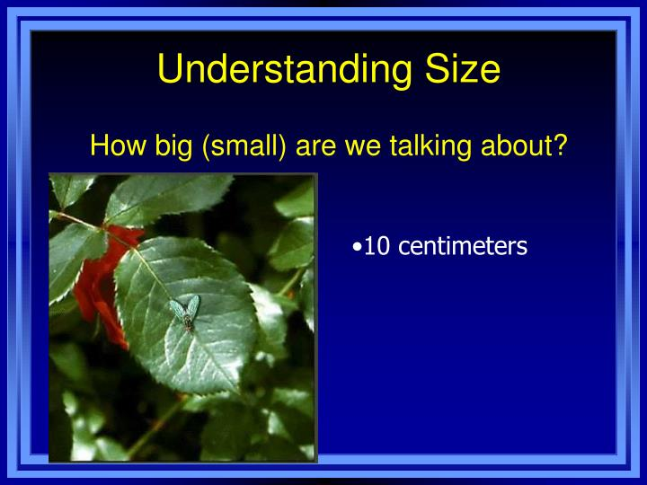 Understanding Size
