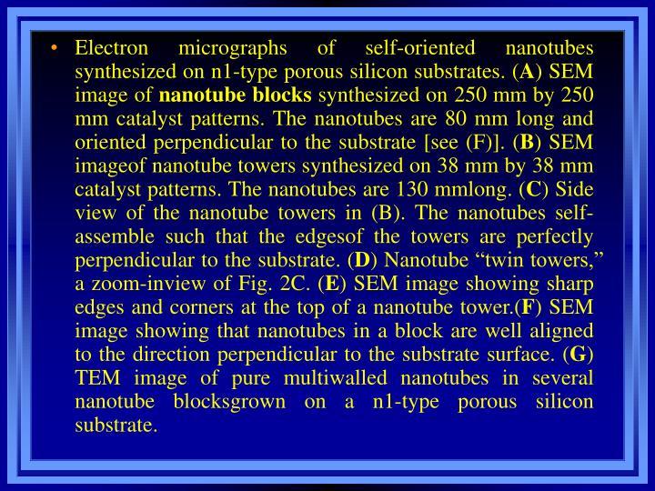 Electron micrographs of self-oriented nanotubes synthesized on n1-type porous silicon substrates. (