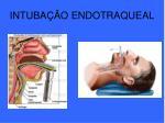 intuba o endotraqueal1
