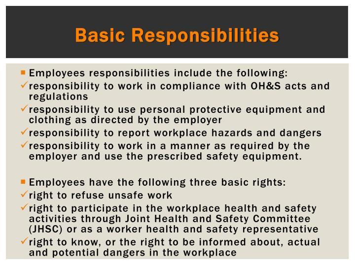 Basic Responsibilities
