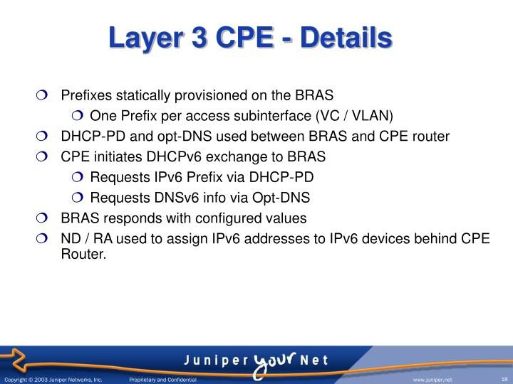 Layer 3 CPE - Details